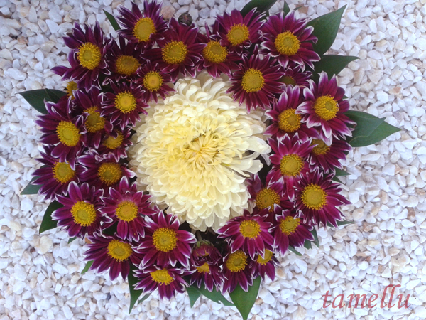 Heart of chrysantemums